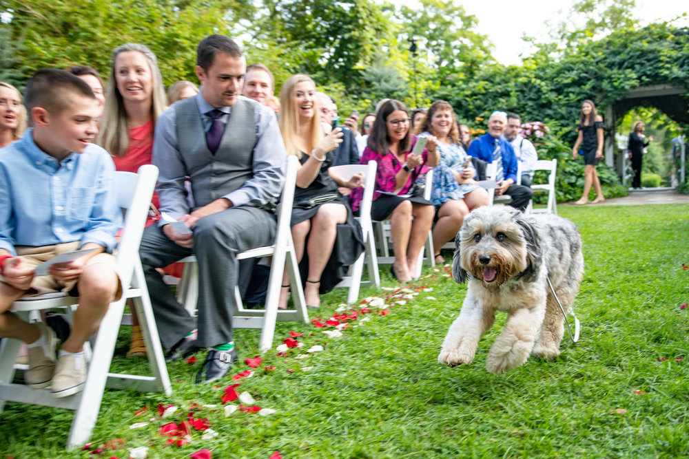 FeastCatering-Sara&Justin-Ceremony-1.jpg