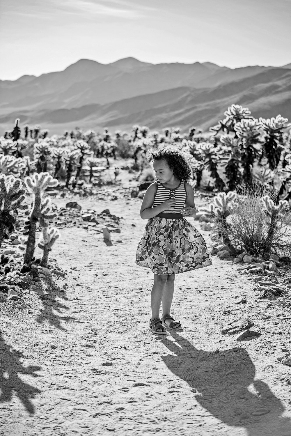 MarylandFamilyPhotography-JoshuaTree-63.jpg