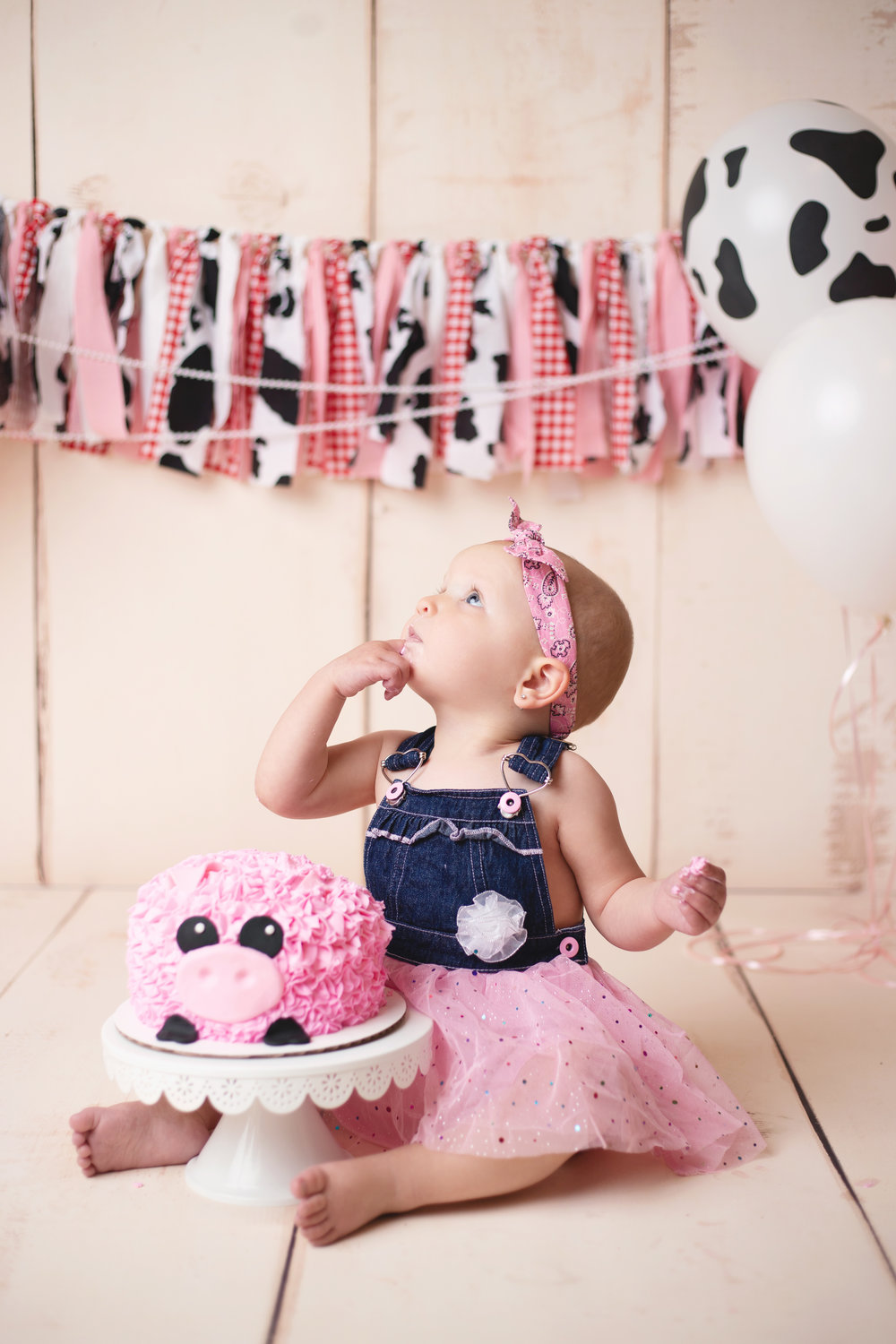 anchorage-cake-smash-photographer-4.jpg