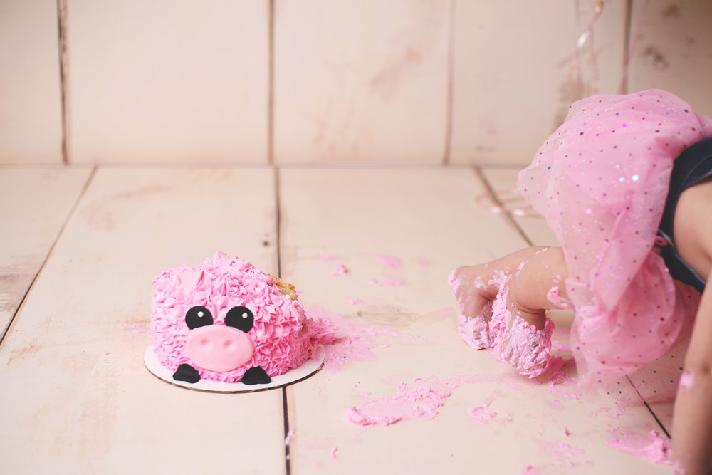 anchorage-cake-smash-photographer-12.jpg
