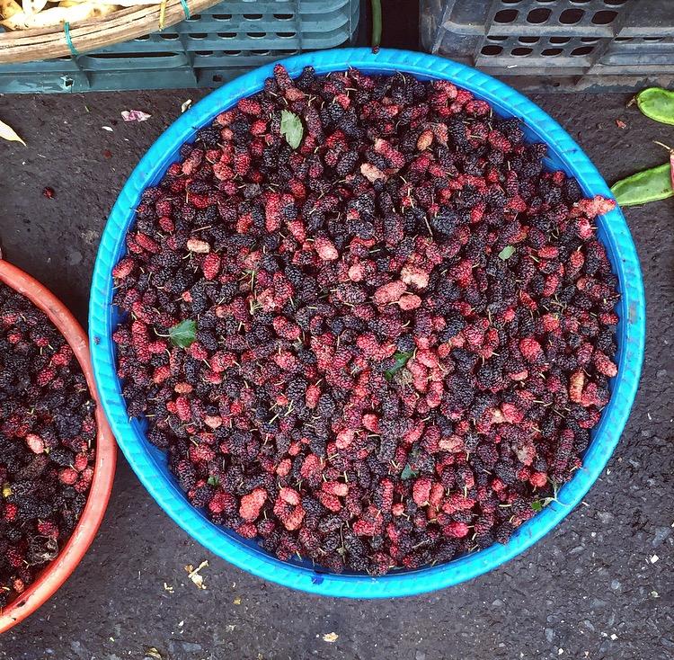 Redbridge_mulberries 2.jpg