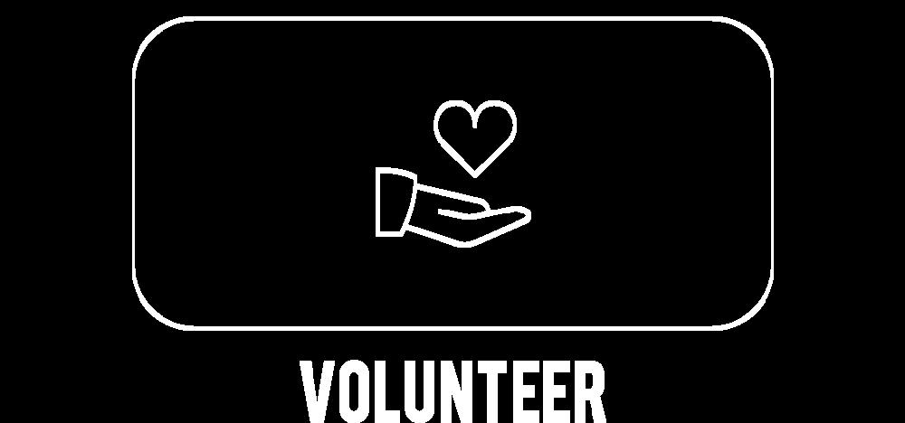 03-Volunteer.png