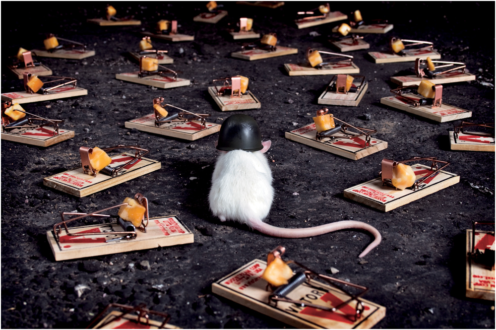 mouse1000x665 copy.jpg