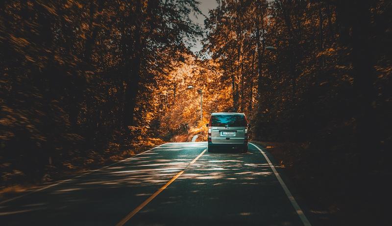 dvla-autumn-road.jpg