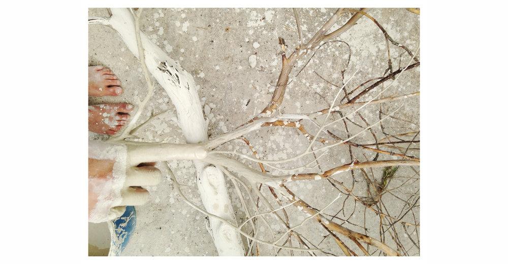 hand-branch.jpg