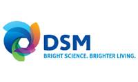 DSM 200x120.jpg