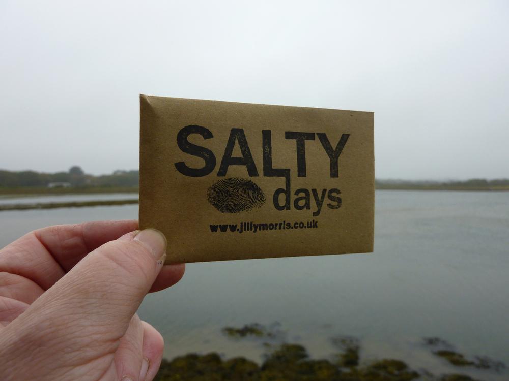 Jilly_Morris_Salty_Days.jpg