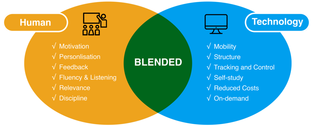 iACE Blended Learning Programme