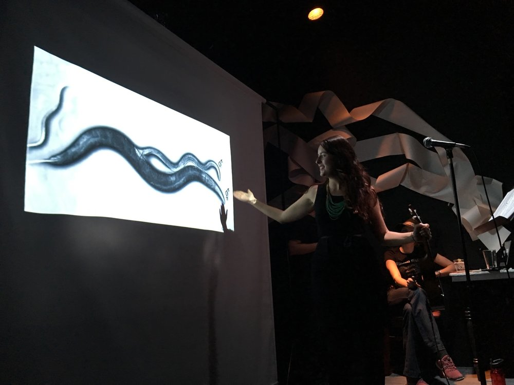 Worm-sex.jpg