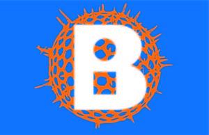 BIOBUS_Graphic-Pattern-4-MASTER-ART-B-Symbol-white-blue-background-jpg-300x194.jpg