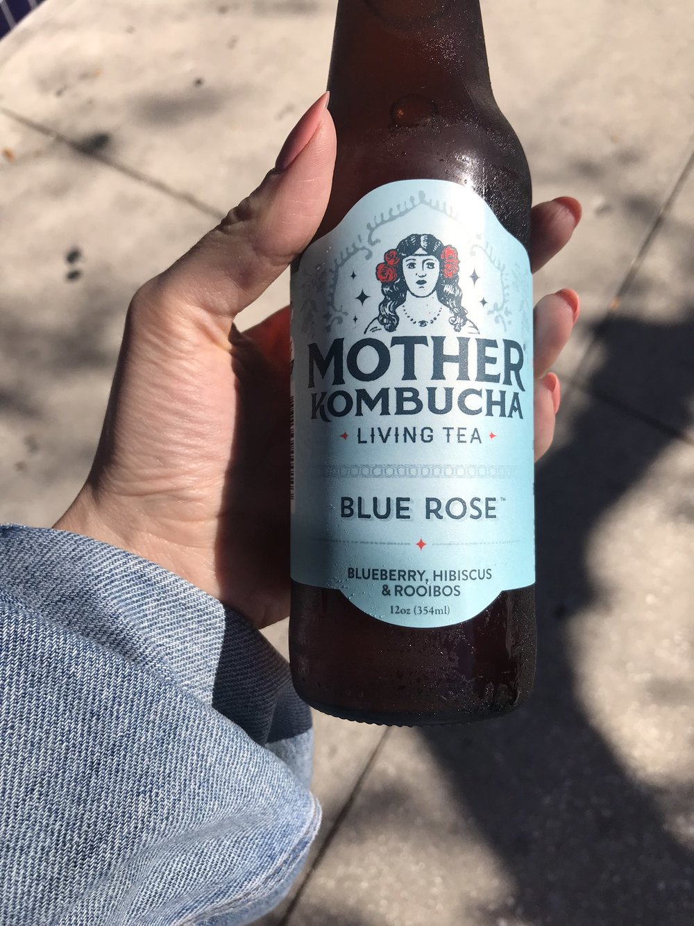 (Me Holding Mother Kombucha at the Cider Press Cafe, St. Pete, Florida.)