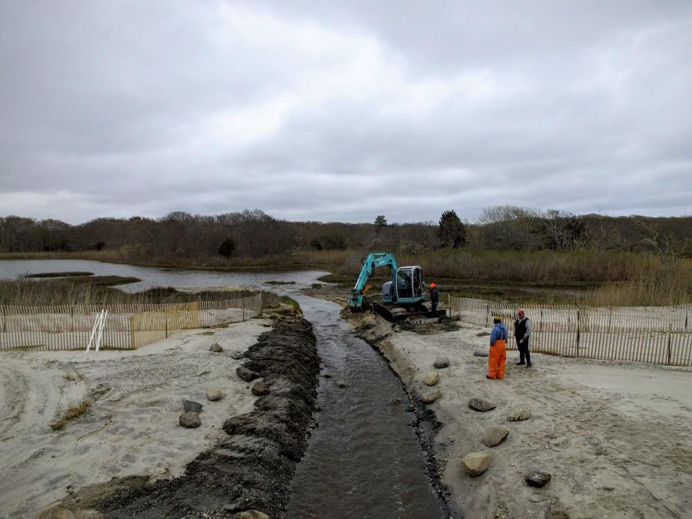 Salt Marsh Modification