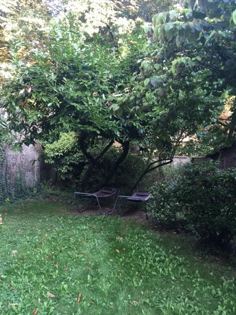 Le jardin de la maison de Lille dont l'embellissement est sans cesse repoussé. Un jour peut-être, un étudiant aux mains vertes viendra... Pour l'instant, deux chaises longues et l'herbe haute ne manquent pas de charme et en disent long sur l'esprit de la Maison de Lille!