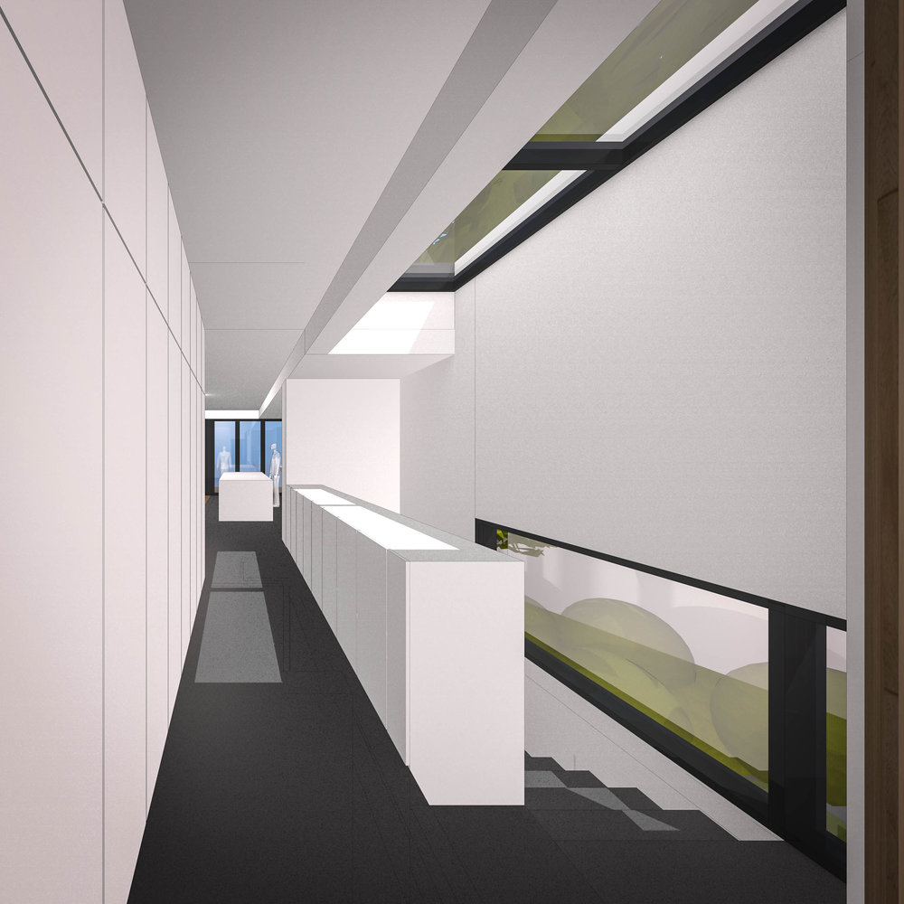 Entry corridor with skylight to mature eucalypt tree, and stair descending to second living space