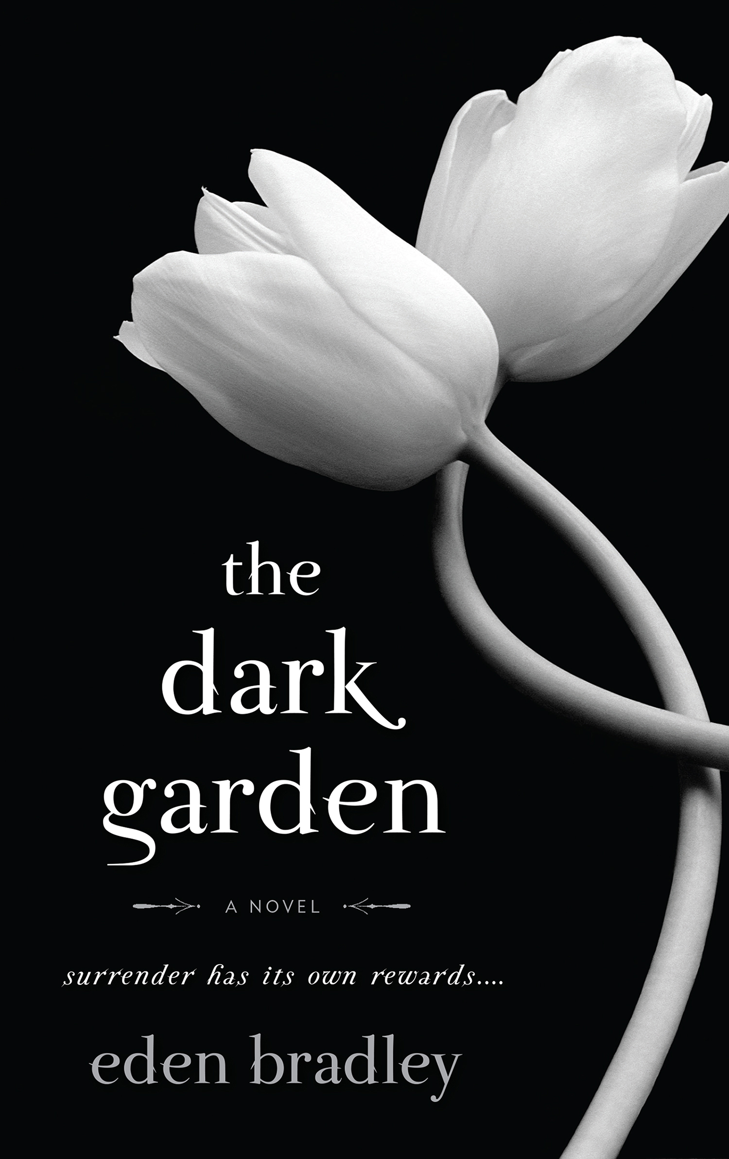 The dark garden misa erder misa erder ccuart Images