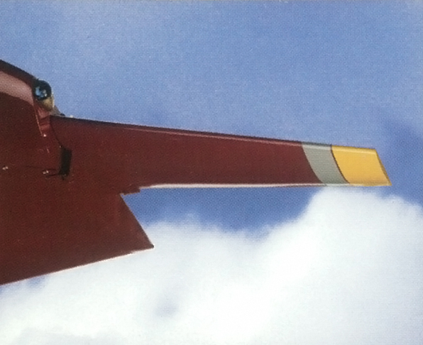 Wing tip vane