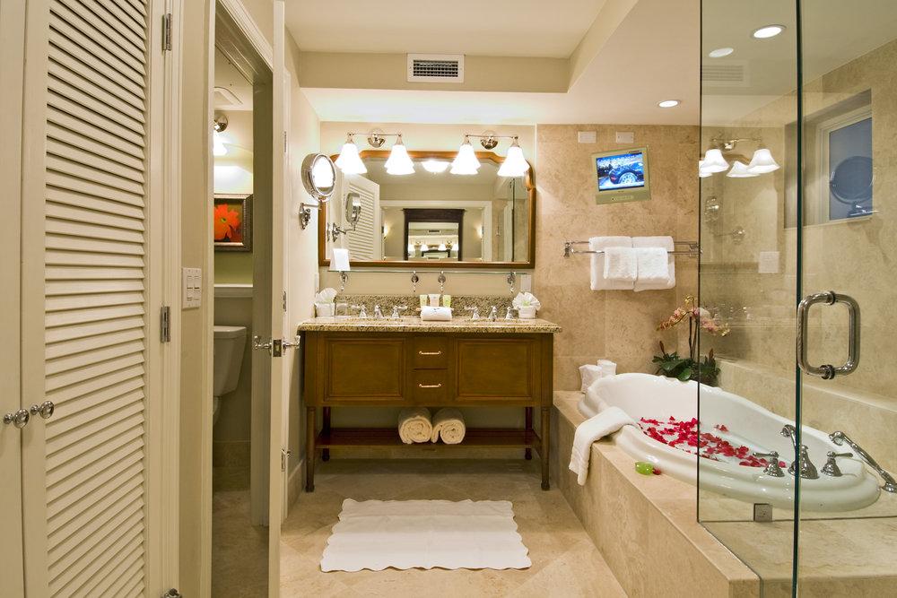 Premium Bathroom.jpg