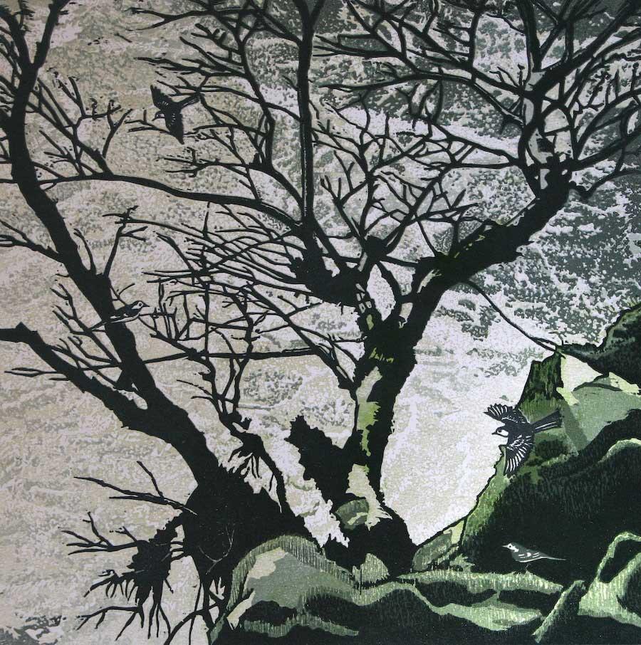 Wagtails at Linton Falls