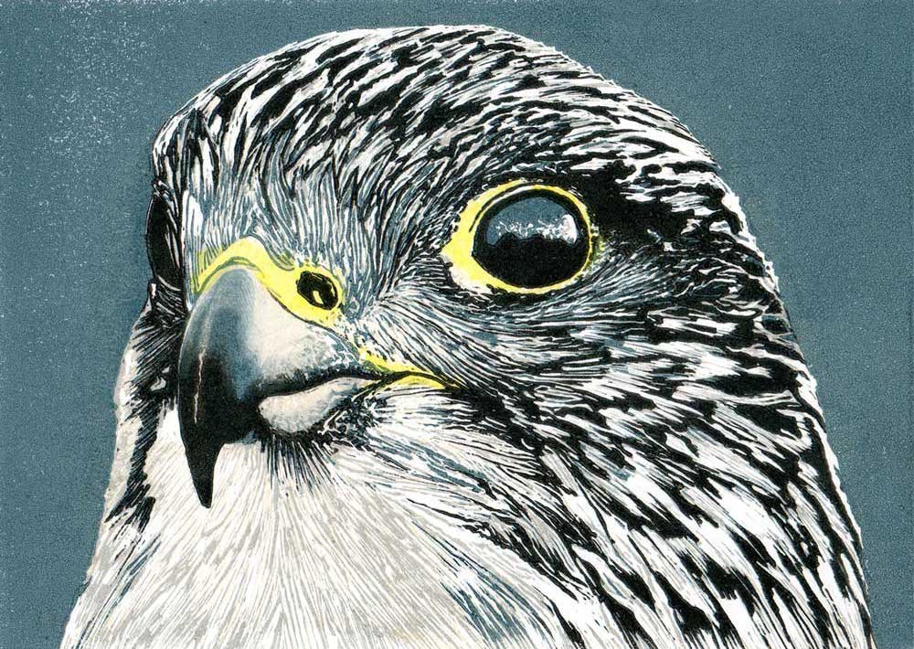 Gyr - four colour reduction print