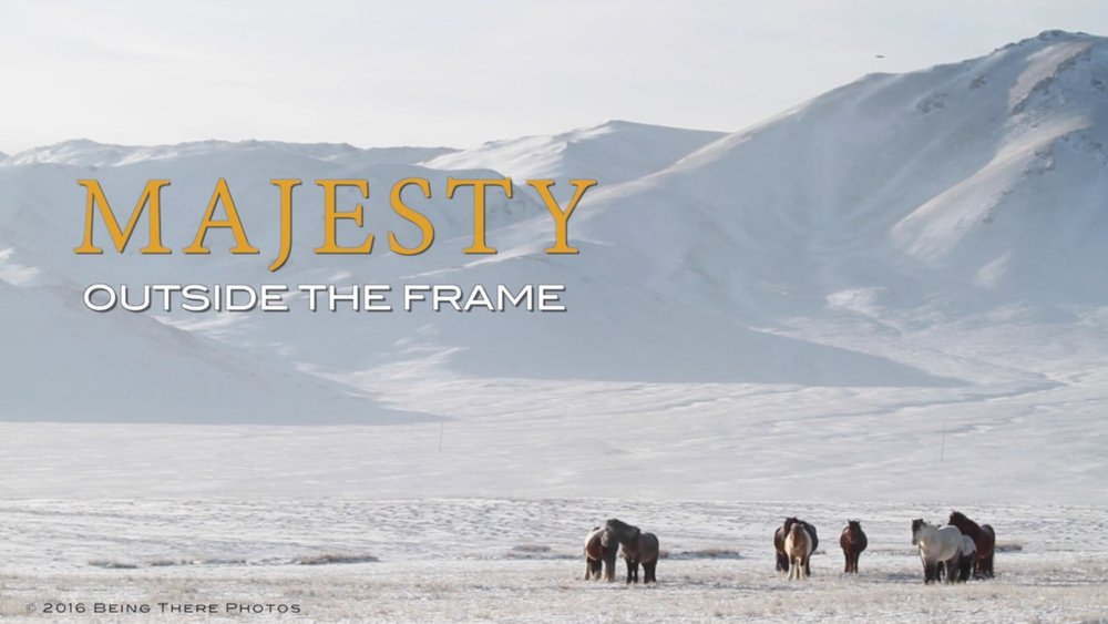 Majesty: Outside the Frame chronicles the exciting adventures of Astrid Harrisson and Robin Sarmento photographing diverse and rare horse breeds on location in India, Mongolia and Australia. Harrisson's stunning images published in The Majesty of the Horse: Illustrated History capture the awe-inspiring species in a frame while Sarmento's video follows the moving elegance of the horse and expands to illustrate the varied cultures. Exclusive interviews and behind the scenes footage of Harrisson's photoshoots bring the book to life and stirs emotions for anyone who loves horses, travel and photography.