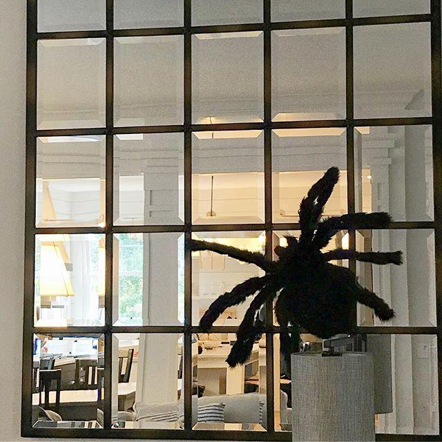 I'm kind of going to miss this giant furry spider on the mirror 🕷😍 . . . .  #halloween #halloweendecor #spider #design #interiordesign #designbuild #renovation #remodel #blackandwhite #potterybarn #mirror #reflection #treesidelane