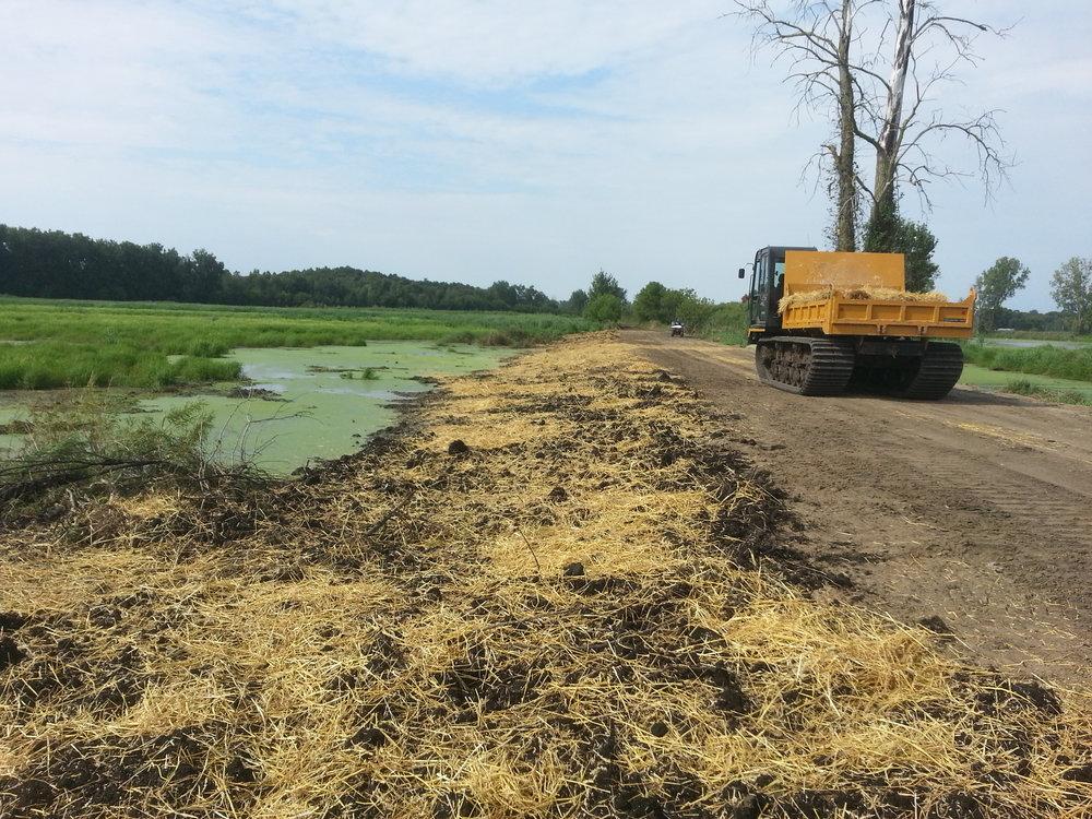 Wetland Restoration, Jackson County, MI