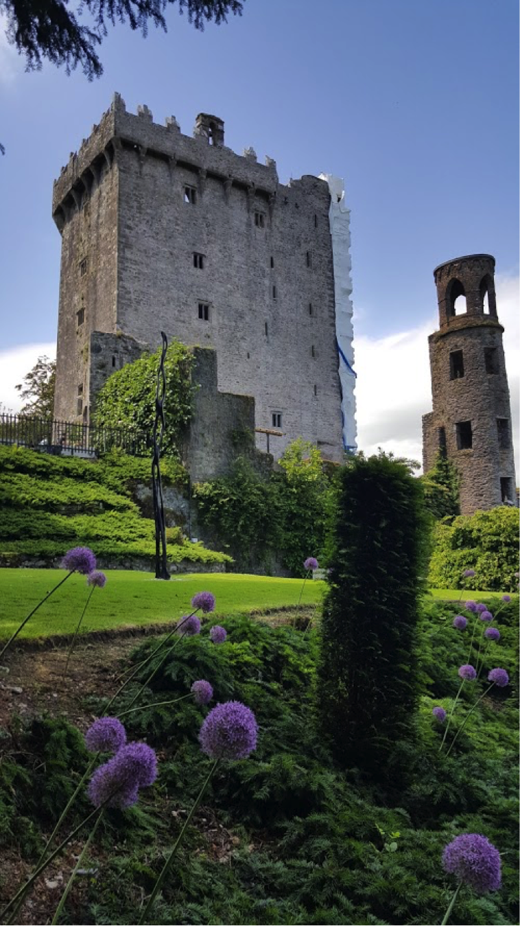 John and Tom Zimmermann took a family trip to Ireland earlier this summer. The Blarney Castle was one of many stops to explore along the way!