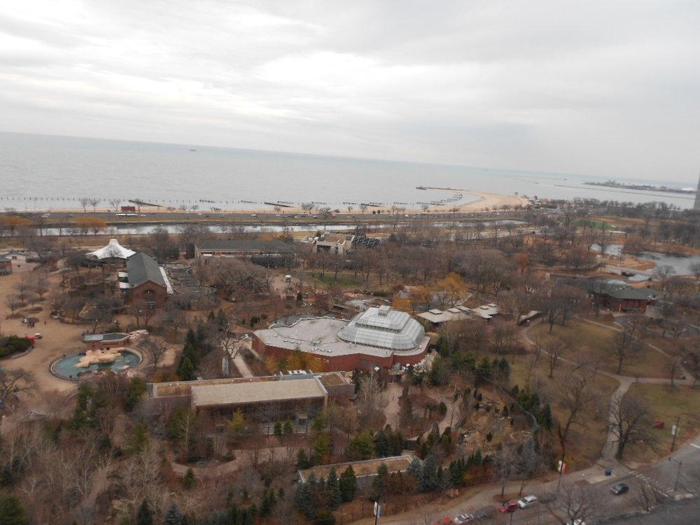 An aerial view of the zoo from a Verizon Wireless rooftop cellular site.