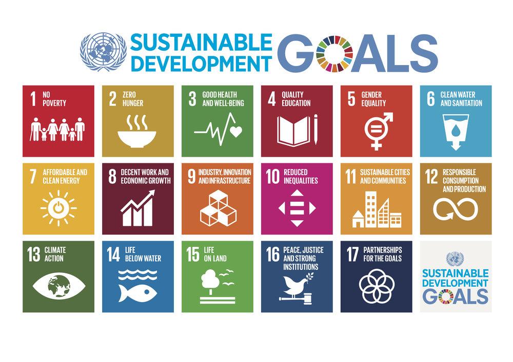 E_2018_SDG_Poster_A3_with_UN_emblem.jpg