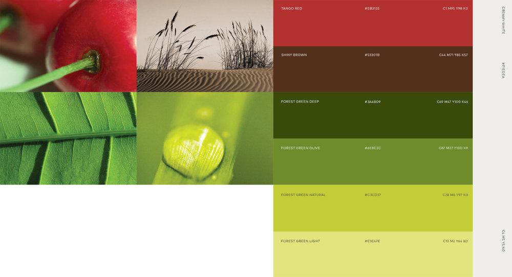 +Demano_color1.jpg