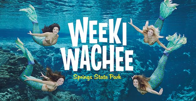 Weeki_Wachee_Mermaids.jpg
