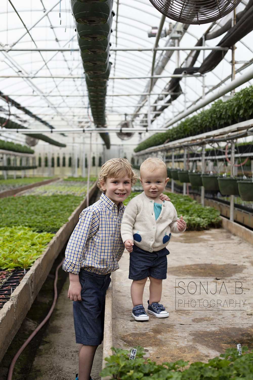 cincinnati greenhouse photography session.jpg