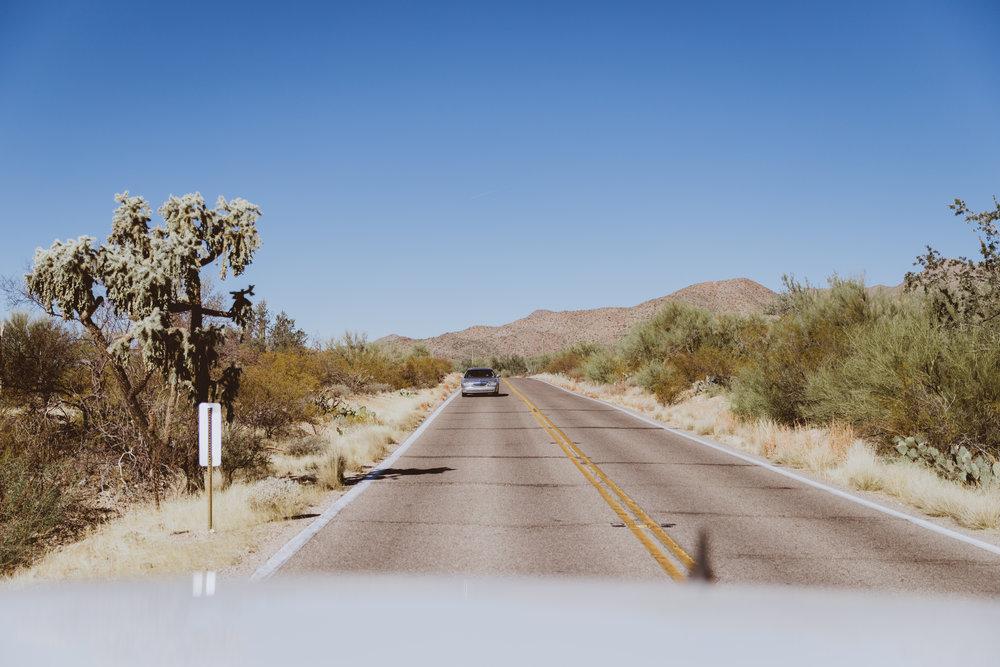 Saguaro Edits (17 of 160).jpg