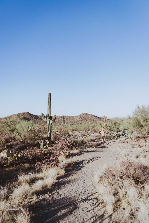 Saguaro Edits (134 of 160).jpg