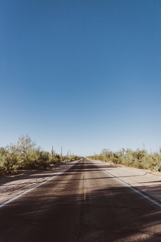 Saguaro Edits (160 of 160).jpg