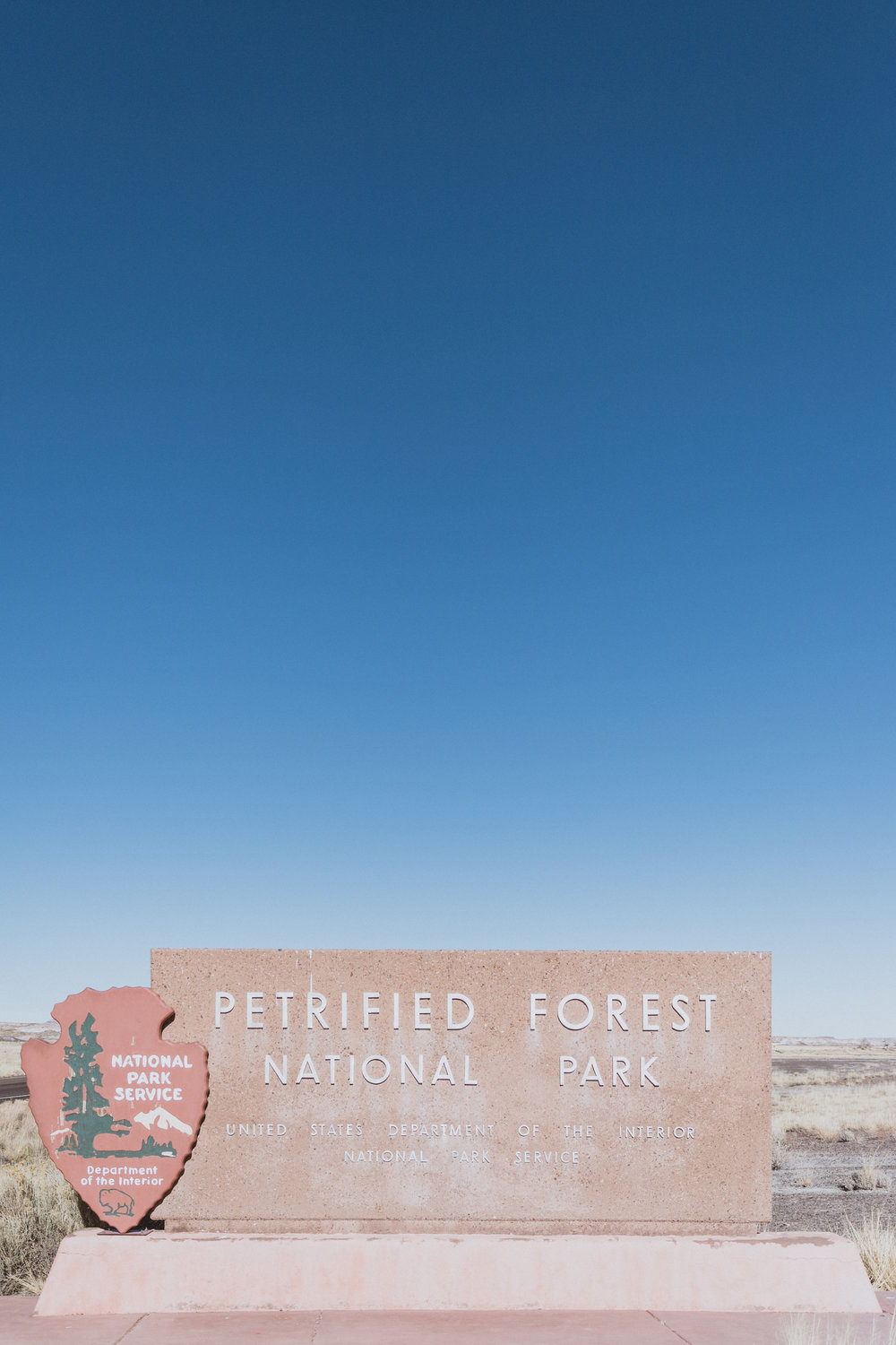 Petrified Forest (13 of 149).jpg