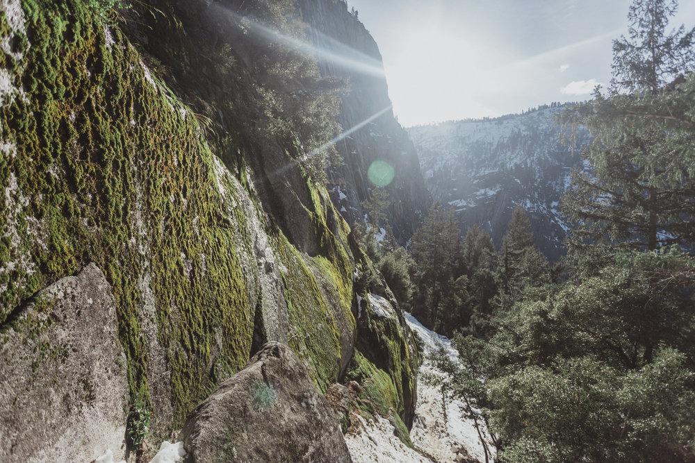 Yosemite Edits (100 of 215).jpg