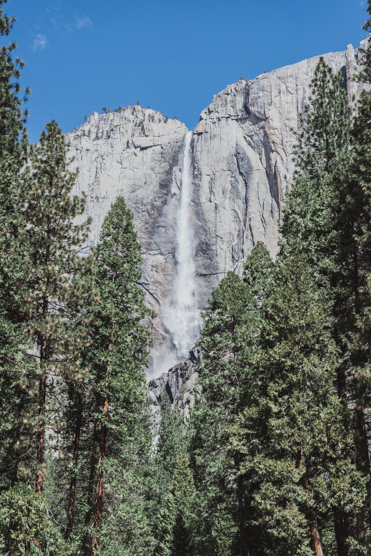 Yosemite Edits (149 of 215).jpg
