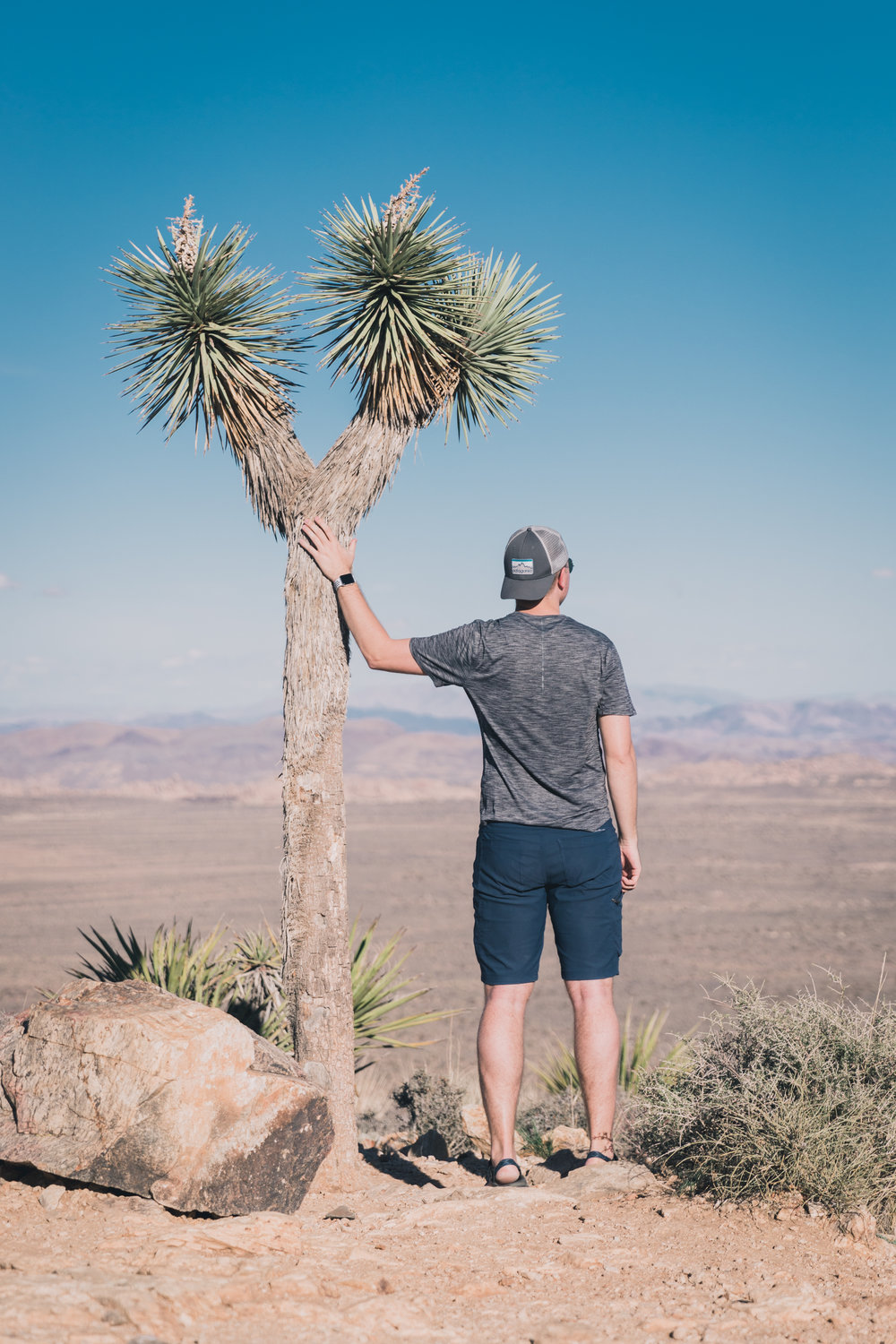 Joshua Tree Edits (98 of 156).jpg