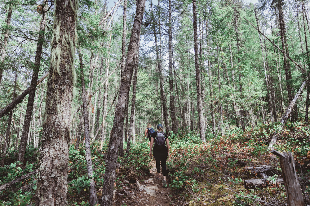 North Cascades Edits-6.jpg