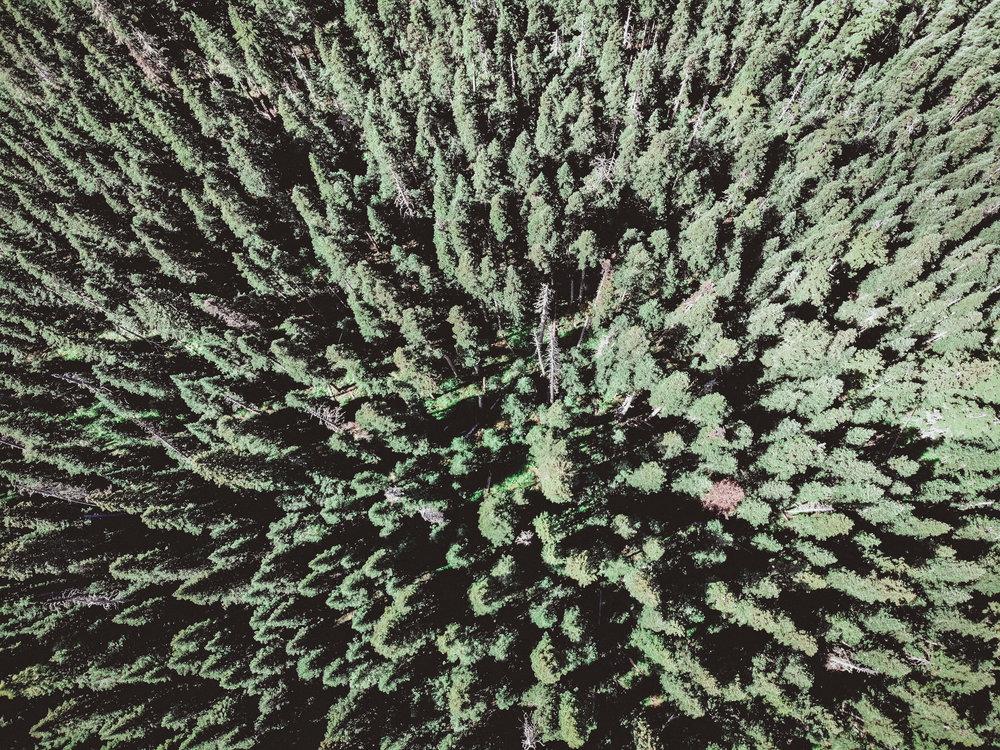 North Cascades Edits-34.jpg