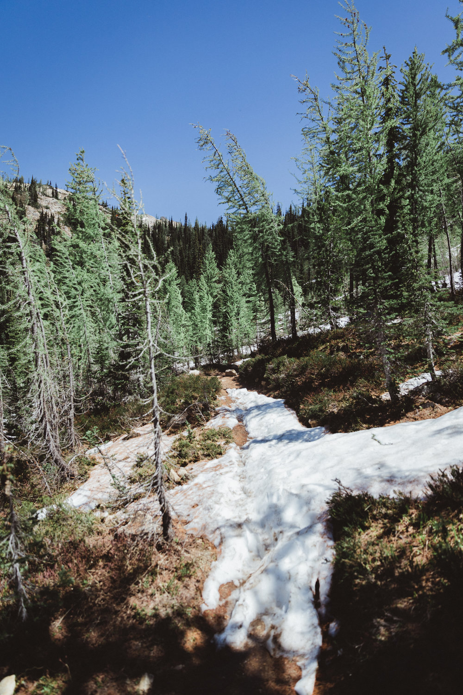 North Cascades Edits-54.jpg