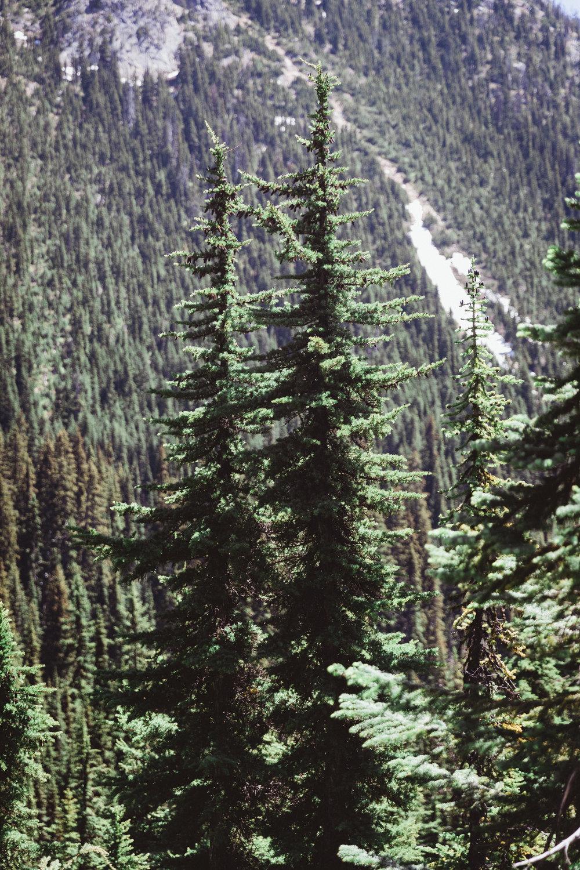 North Cascades Edits-64.jpg