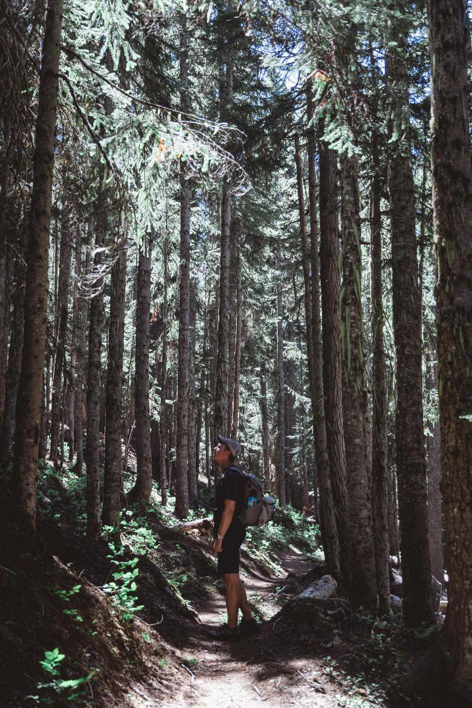 North Cascades Edits-69.jpg
