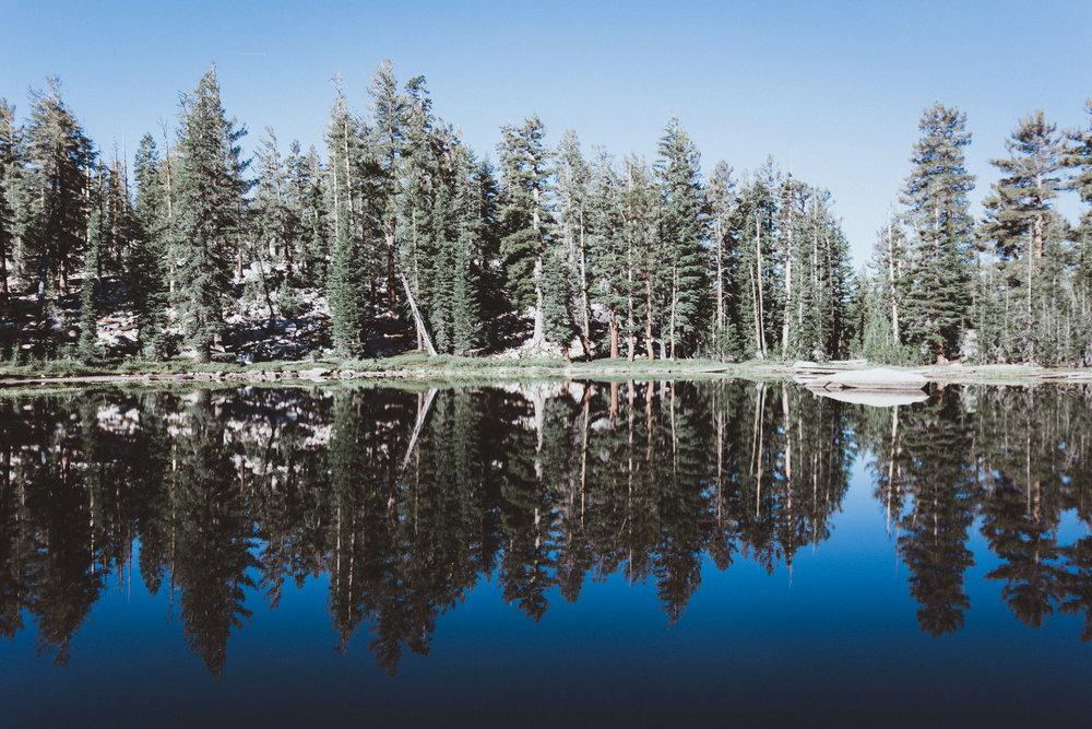 Yosemite16 Edits-110.jpg