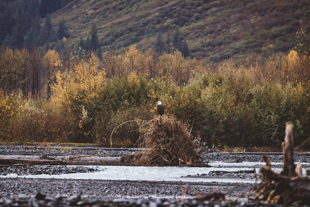 Alaska Edits-280.jpg