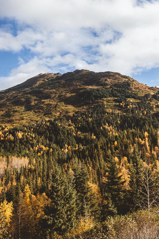 Alaska Edits-247.jpg