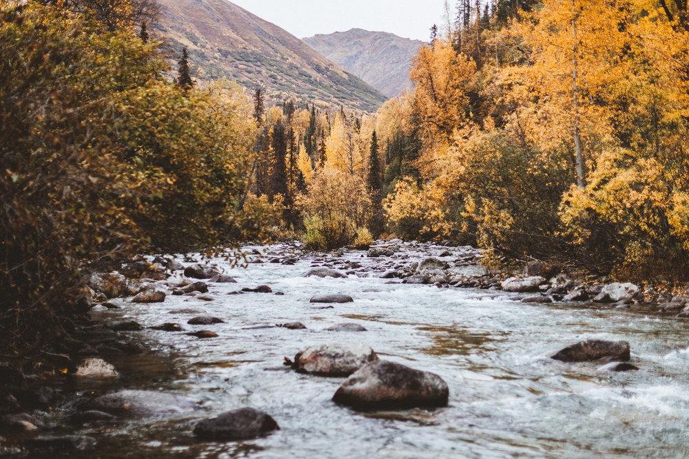 Alaska Edits-196.jpg