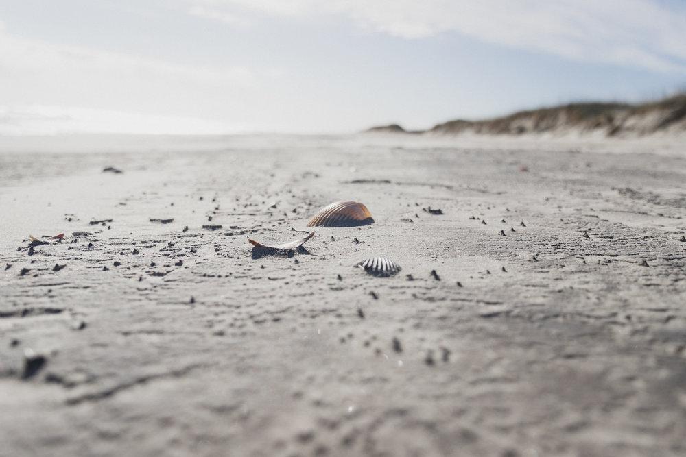 Outer Banks Edits-46.jpg