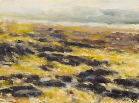 """Waterline"" by Dolores Justus (c)2018"
